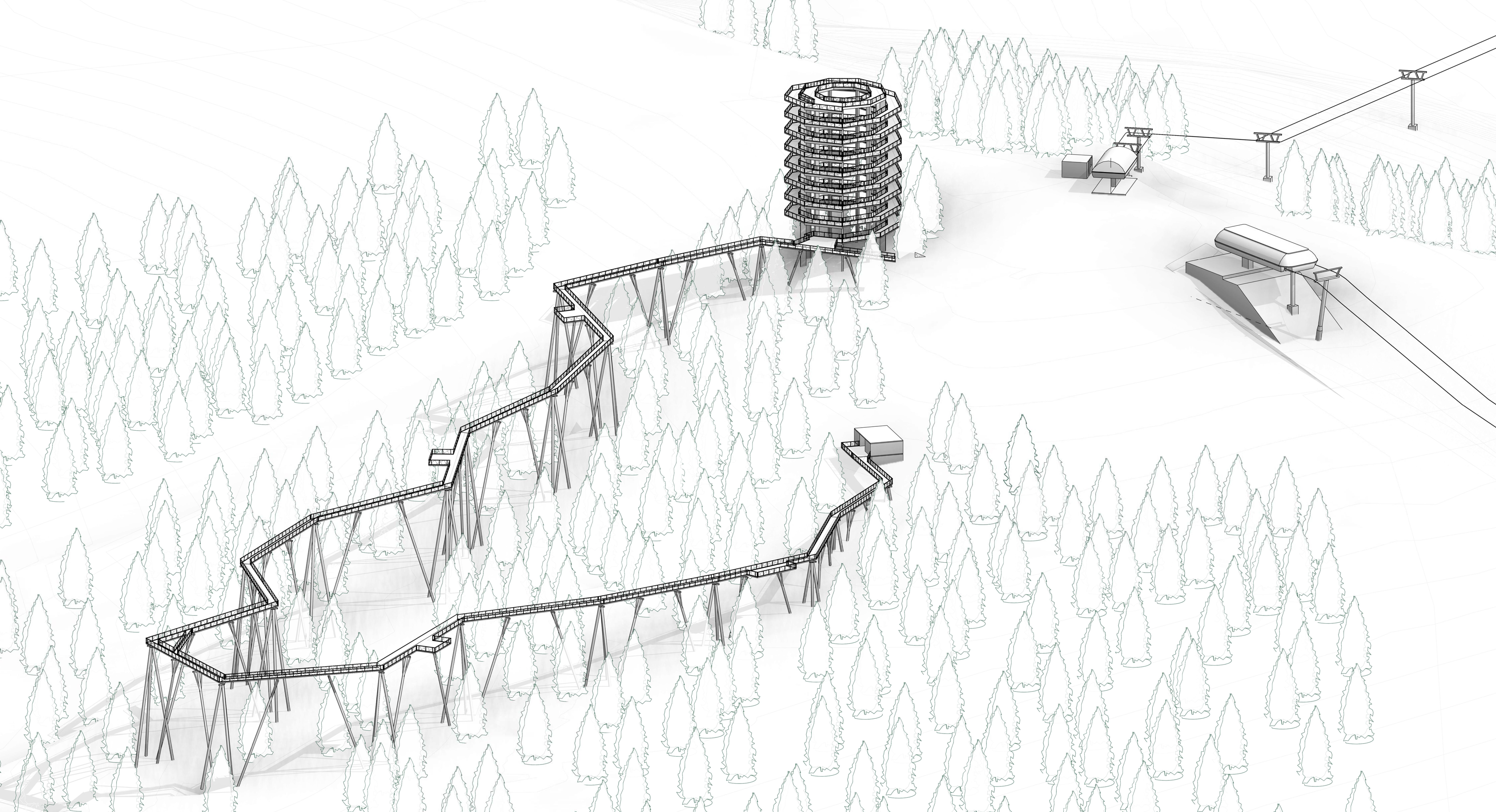 Na Slovensku vyrastie 24 metrov vysoký chodník korunami stromov