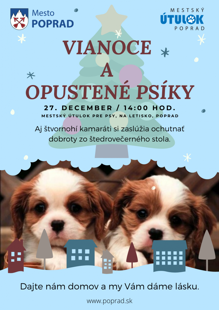 Vianoce a opustené psíky