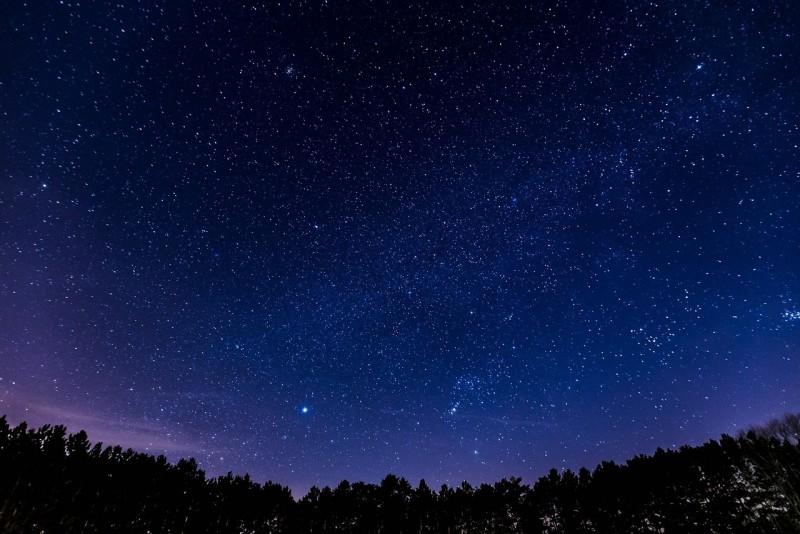 Obrázok: Noc výskumníkov