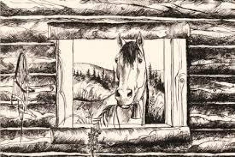 Obrázok: (Yu)konský zápisník (čo sa nevošlo do knihy)