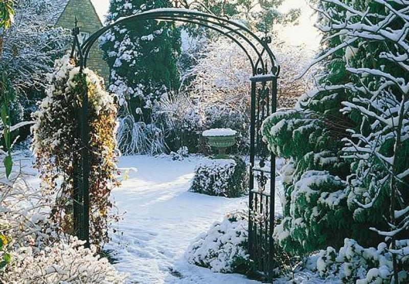 Obrázok: Zimná záhrada