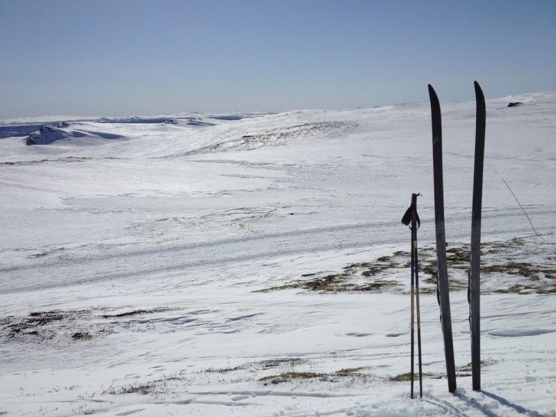 Obrázok: Lesníci získali na majstrovstvách v Nórsku medaily