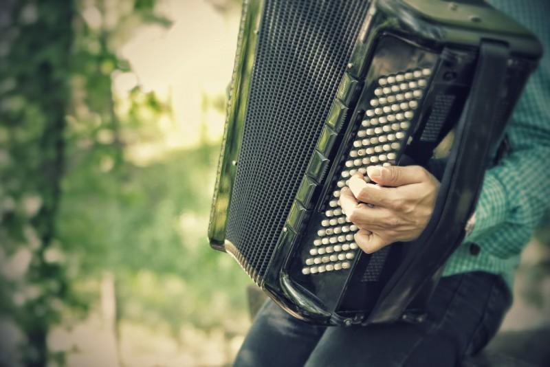 Obrázok: Hudobné posedenie s harmonikou
